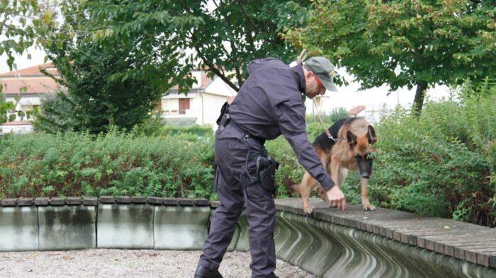 Pusher con 300 dosi di eroina arrestato al parco Emmer di Marghera