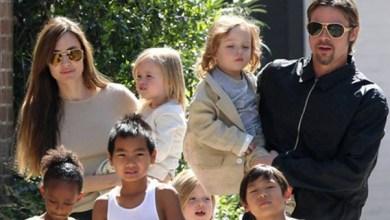 Brad Pitt e Angelina Jolie: affidamento congiunto dei figli
