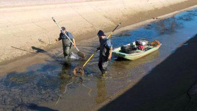 Musile di Piave: entrano in servizio le guardie ittiche
