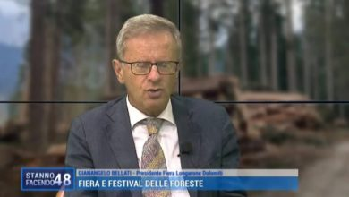 Fiera e Festival delle Foreste 2021: il legame tra la montagna e Venezia