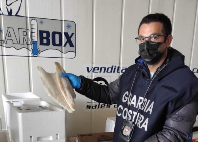 Pesce scaduto o non in regola: sequestrati 50 kg a Trento - TeleVenezia