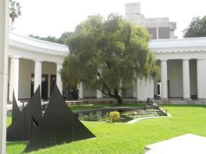 jardin interno museo bellas artes