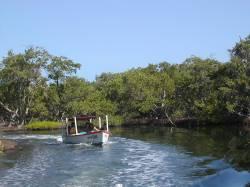 Parque Nacional La Restinga