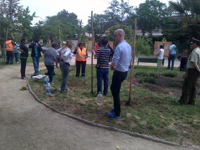 Resultado de imagen para barrio 4 alamos ecobarrio