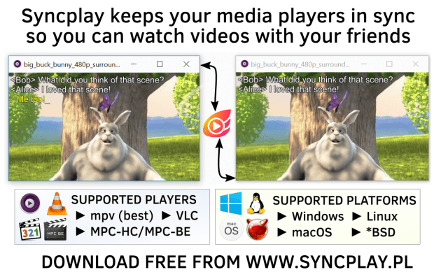 Syncplay best alternatives to Rabbit