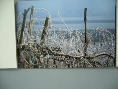 Inverno in Polesine
