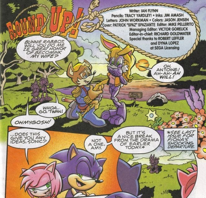 Antoine, Bunnie Rabbot sonic the hedgehog