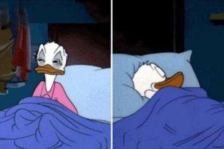 Know your meme: Il meme di Paperino assonnato