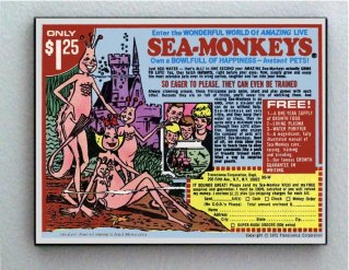 sea monkeys ad