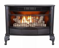 GAS FIREPLACE FREESTANDING STOVE  Fireplaces