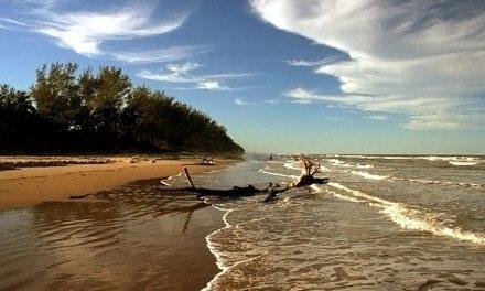 El saneamiento de la zona costera se estará realizando de manera permanente durante todo el año:Tuxpan