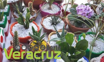 Se realiza la expo-venta Consume Local Xalapa 2018
