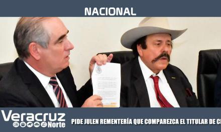 PIDE JULEN REMENTERÍA QUE COMPAREZCA EL TITULAR DE CENACE