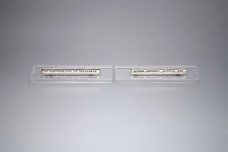 brooches-latin-silver-piespraudes-verba