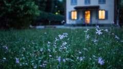 Maßgeschneiderter Schutz mit dem Wohngebäudeversicherung Test