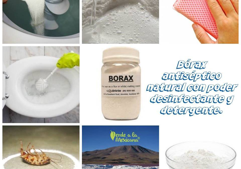 Boráx antiséptico natural con poder desinfectante