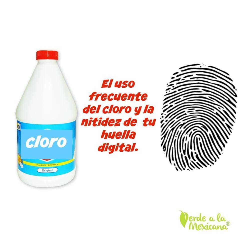El cloro y tu huella digital verde a la mexicana for Cambios quimicos en la cocina