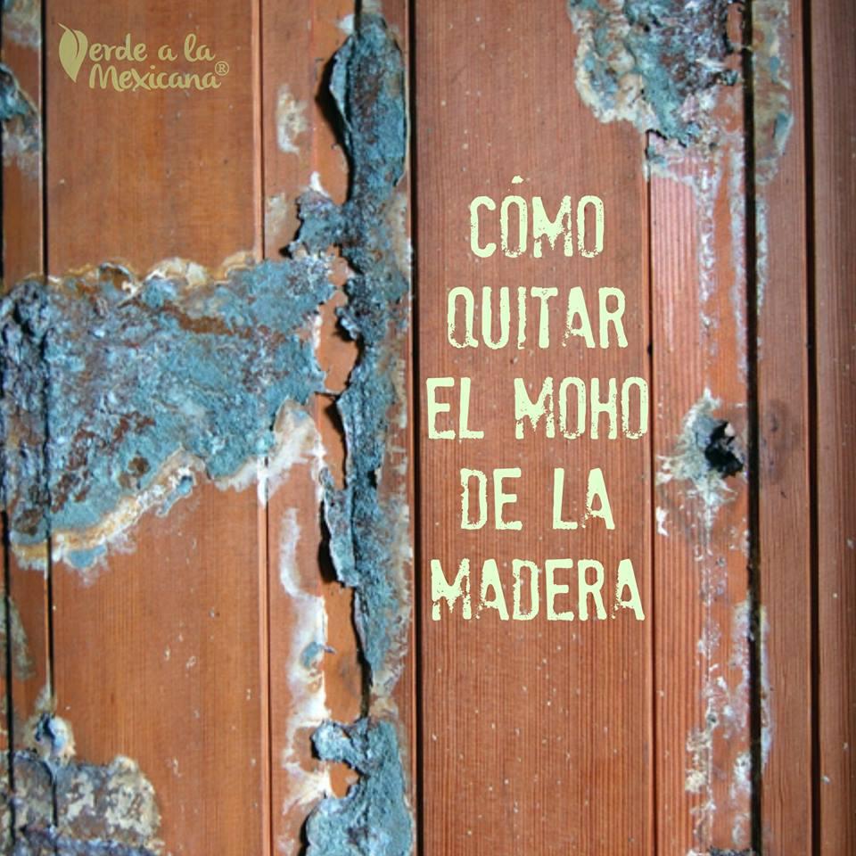 C mo quitar el moho de la madera verde a la mexicana - Como quitar el moho del bano ...