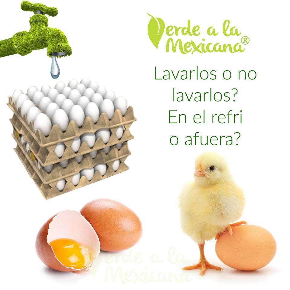 refrigerar-o-no-los-huevos