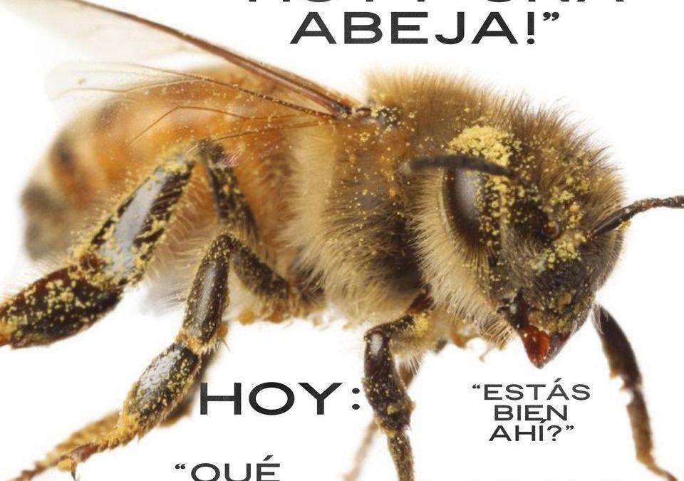 Cuida a las abejas