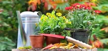 Giardinaggio i lavori del mese di settembre  VerdeBlog