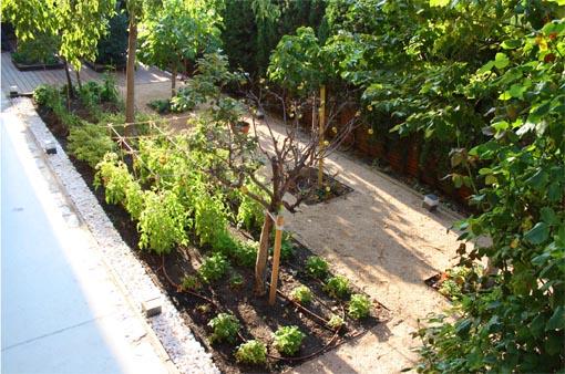 Jardín Colmenar Espacios Vivos