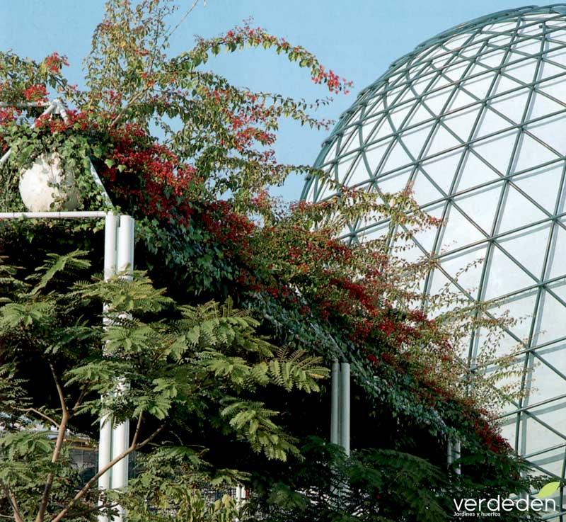 Esfera Bioclimática y pérgolas en Expo92