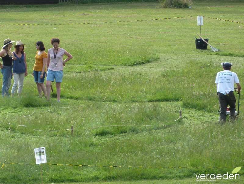 Land Art Competition Bristol, construccion