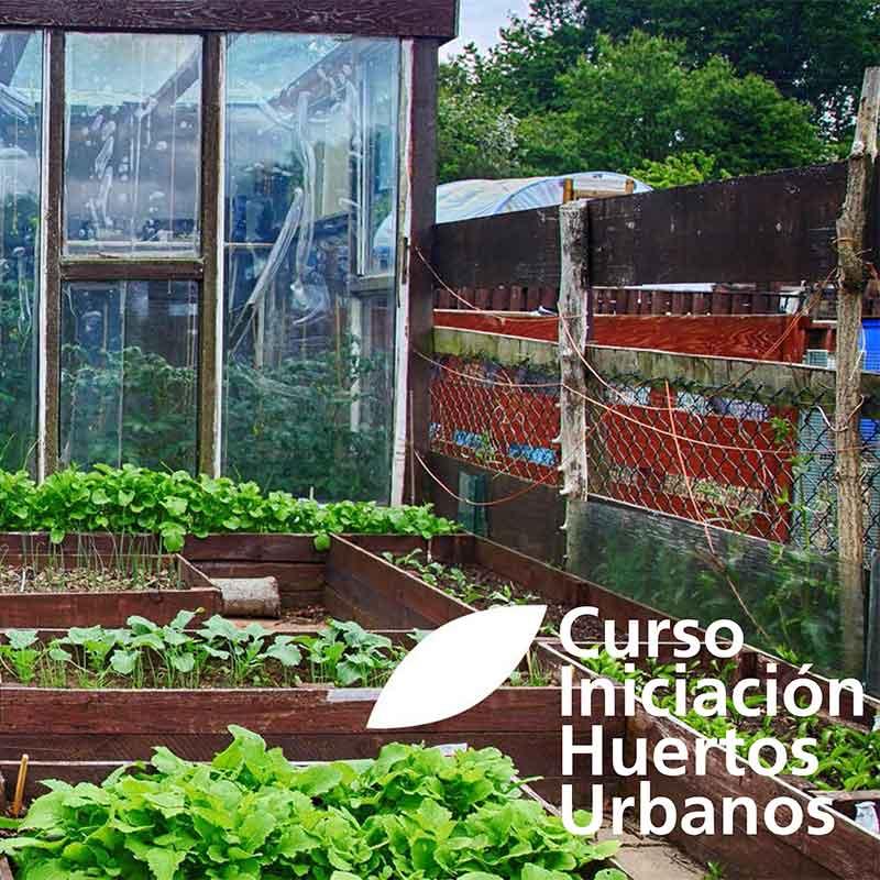 curso-de-huertos urbanos en Madrid