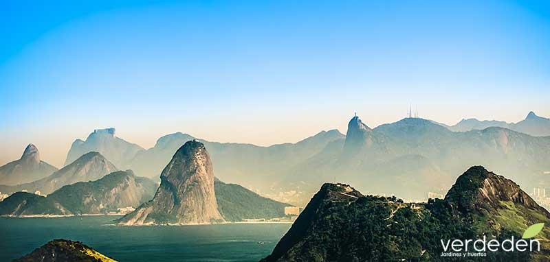 Rio de Janeiro: paisaje patrimonio mundial UNESCO