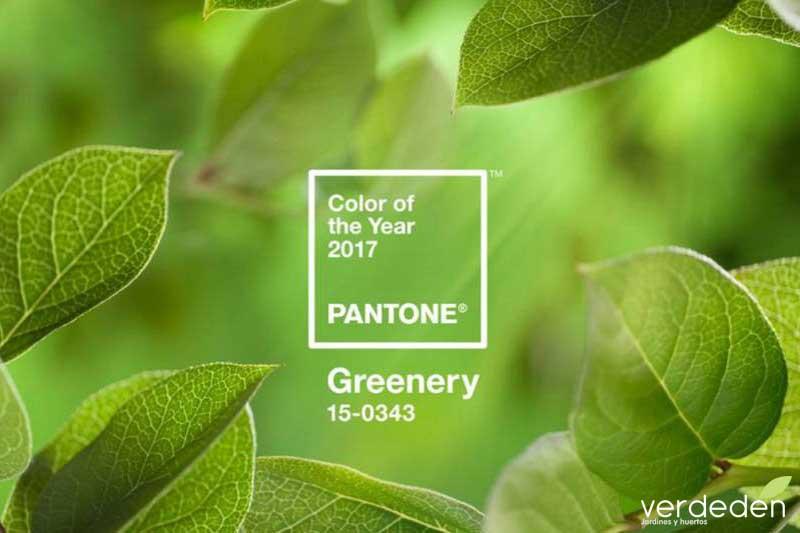 COLOR DEL AÑO 2017 greenery PANTONE