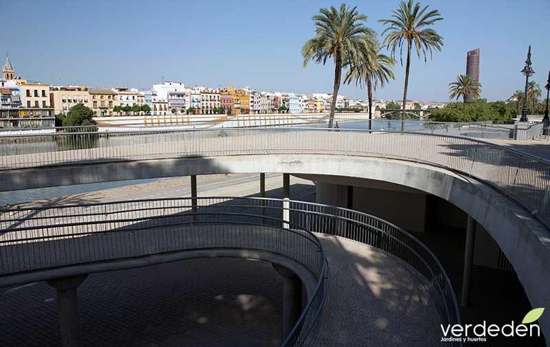 rampa en Marques del Contadero, Sevilla