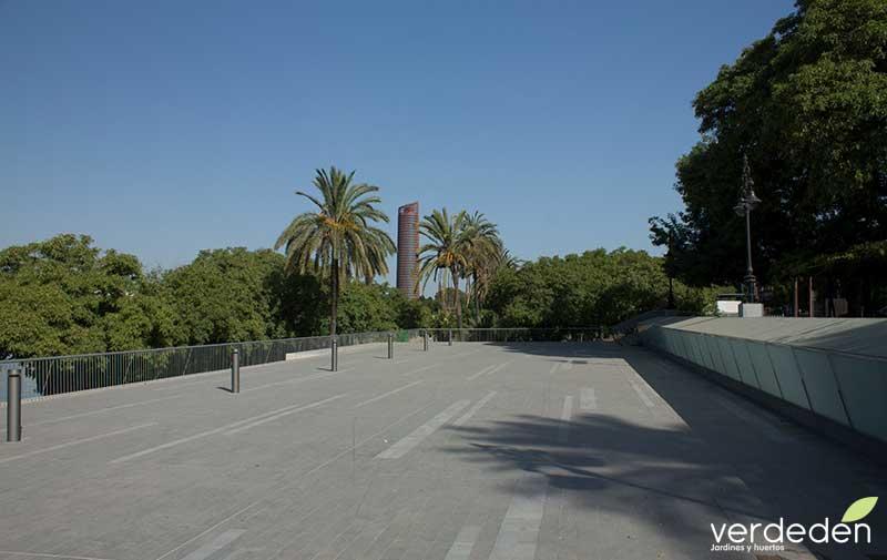 Nuevas plazas duras: Paseo Marques de Contadero en Sevilla