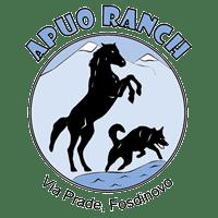 Apuo Ranch percorsi a cavallo