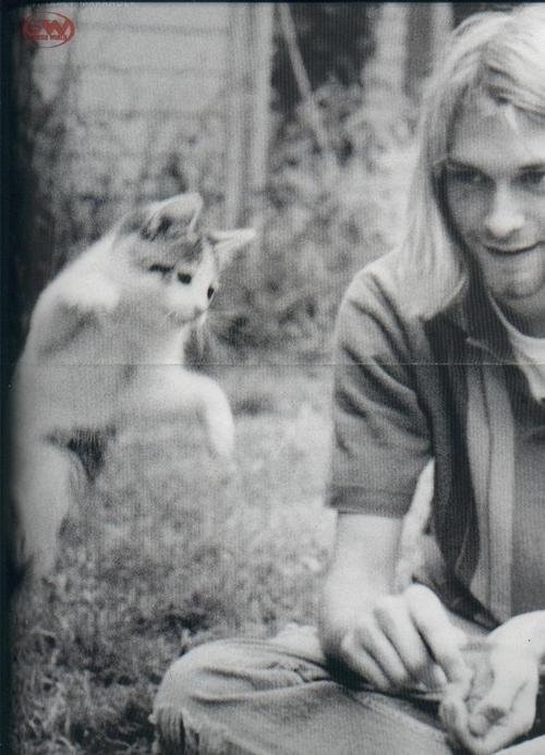 Kurt'n'Kitty
