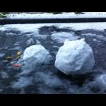 Toter Schneemann ist tot.