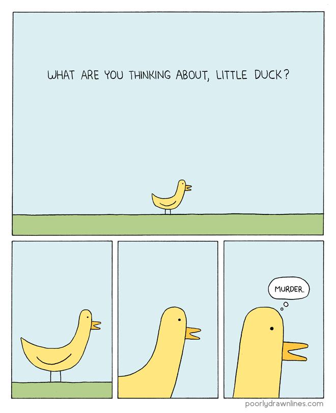 little-duck