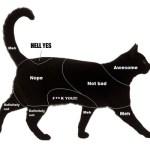 Howto: Katzen und Hunde streicheln