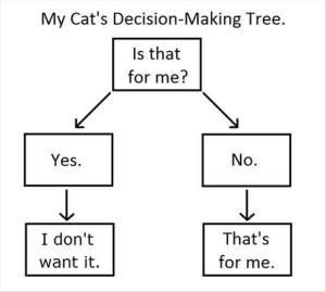 my cat's decision making tree
