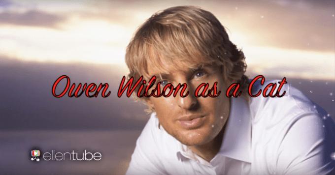 Wow: Owen Wilson as a cat