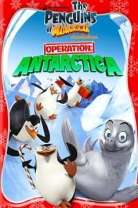 Madagascar: Los pinguinos en operacion antartica