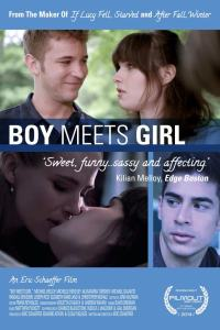 Boy Meets Girl (2014) DVD Rip Subtitulado