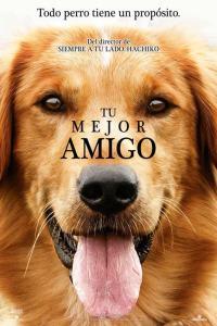 Tu mejor amigo (2017) HD 1080p Latino