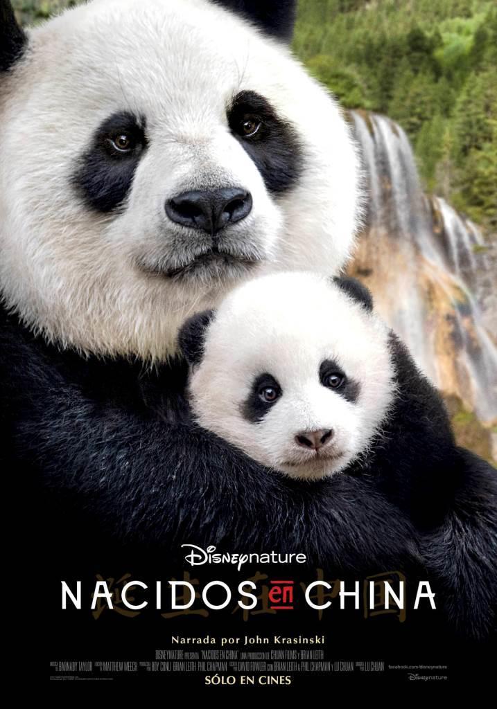 Disneynature: Nacidos en China