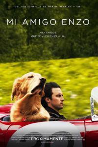 Mi Amigo Enzo (2019) HD 1080p Latino
