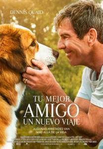 Tu mejor amigo: un nuevo viaje (2019) HD 1080p Latino