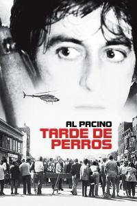 Tarde de perros (1975) HD 1080p Latino