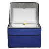 Cool-Cube™-FT-08-Front-Open-slightly-down-Frozen-Temps-Tabs