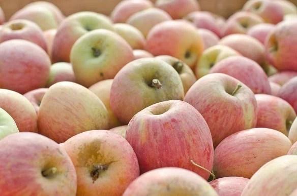 Pomes ecològiques de Lleida - Productes amb cor - Veritas