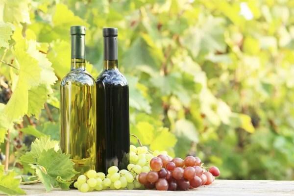 El vino ecológico es más antioxidante que el no ecológico - Estudios - Veritas